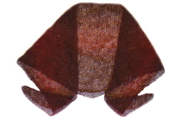 Handstickad sjal vinröd från Bättre värld
